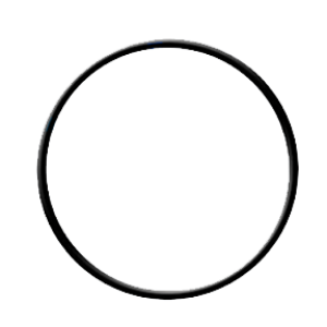 O-ring for Standard-Size Filter Housing (61301605452/ 113029) -0